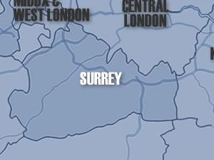 ArcticMap-Surrey
